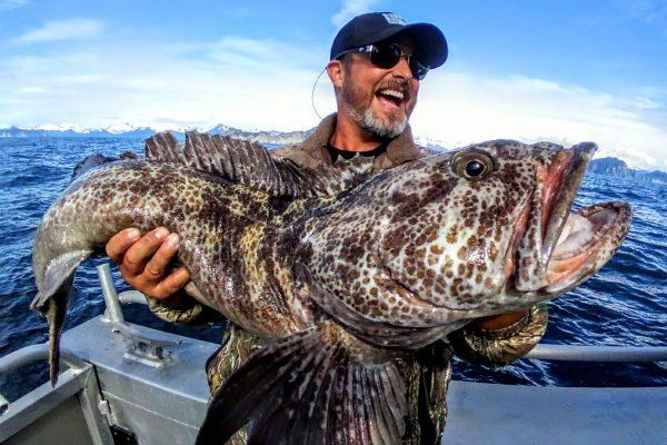 Ling Cod Fishing